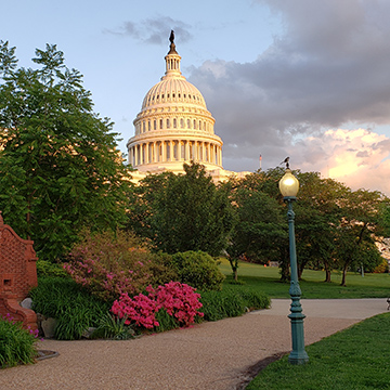 Photo of the Capitol in Washington D.C.